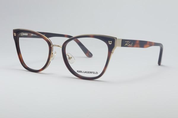Karl Lagerfeld 287